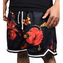 Training short HOOP FIREBISCUS OHANA multicolor for men | PROJECT X